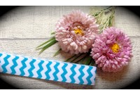 RG32 Chevron Grosgrain Ribbon(Blue)