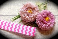 RG32 Chevron Grosgrain Ribbon(Pink)