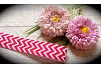 RG32 Chevron Grosgrain Ribbon(Red)