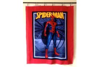 C2764 SpiderMan Panel