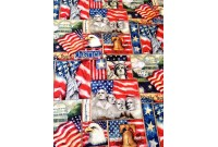 "C2836 Designer Brand Cotton""National Monuments"""