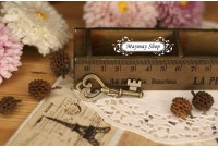 Rw194(L) Antique Keys Charm